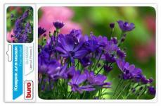 Buro BU-M20012 рисунок/цветы